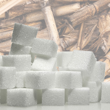 Sugar Processing Equipment